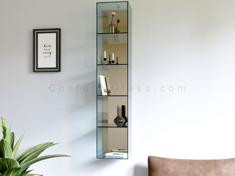 Wall Mounted Glass Cabinet with Shelves